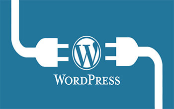 WORDPRESS-in-Training-kolkata